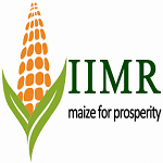 ICAR-Indian Institute of Maize Research-Grabemployment